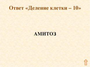 Ответ «Деление клетки – 10» АМИТОЗ