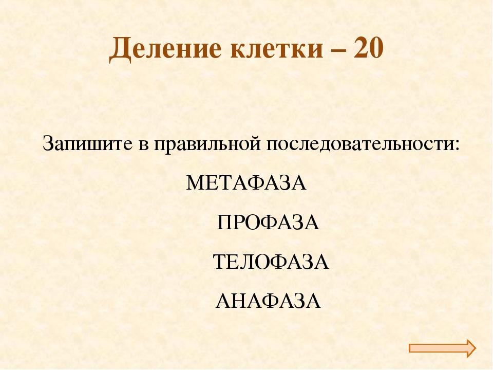 Деление клетки – 20 Запишите в правильной последовательности: МЕТАФАЗА ПРОФ...
