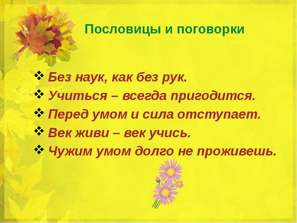 Русские пословицы знаниях и разуме