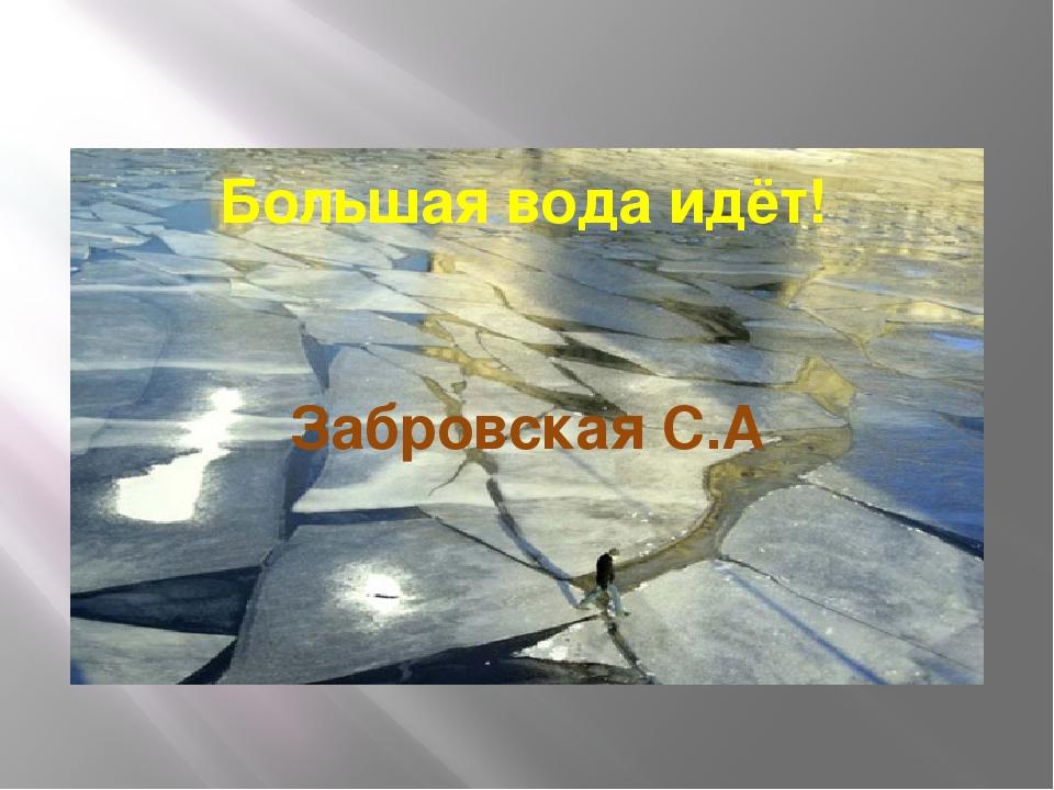 Большая вода идёт! Забровская С.А