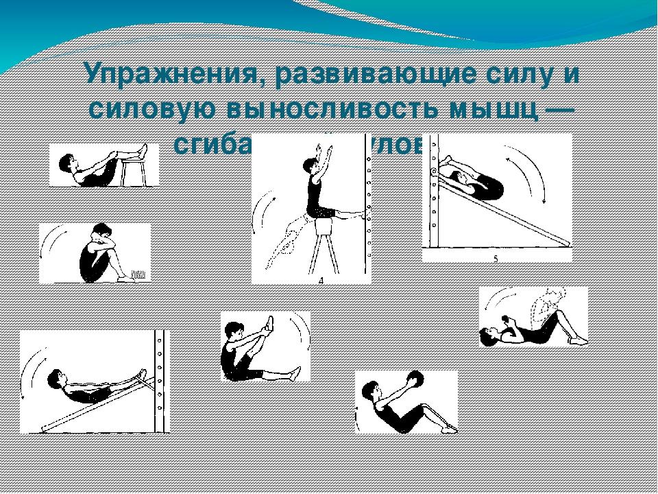 комплекс упражнений по физкультуре с картинками втором этаже расположена