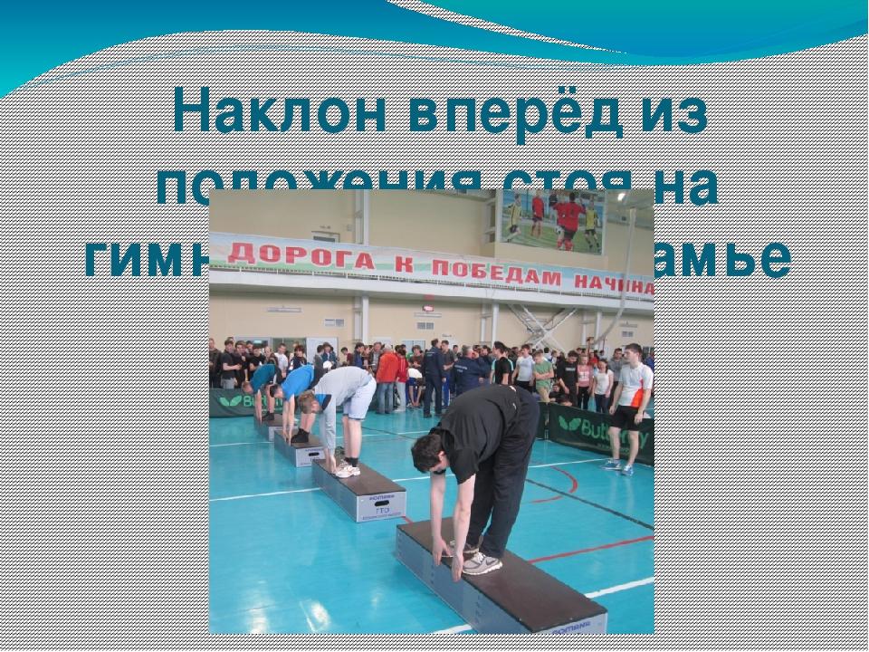 Картинки наклон вперед из положения стоя на гимнастической скамье
