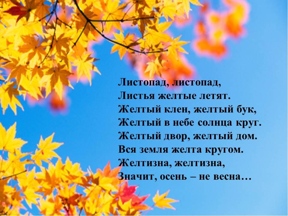 Осень стихи на картинках
