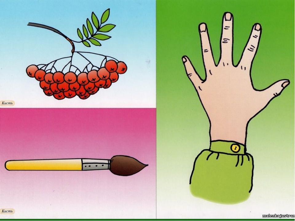 тех иллюстрации к омонимам выполненный традиционном