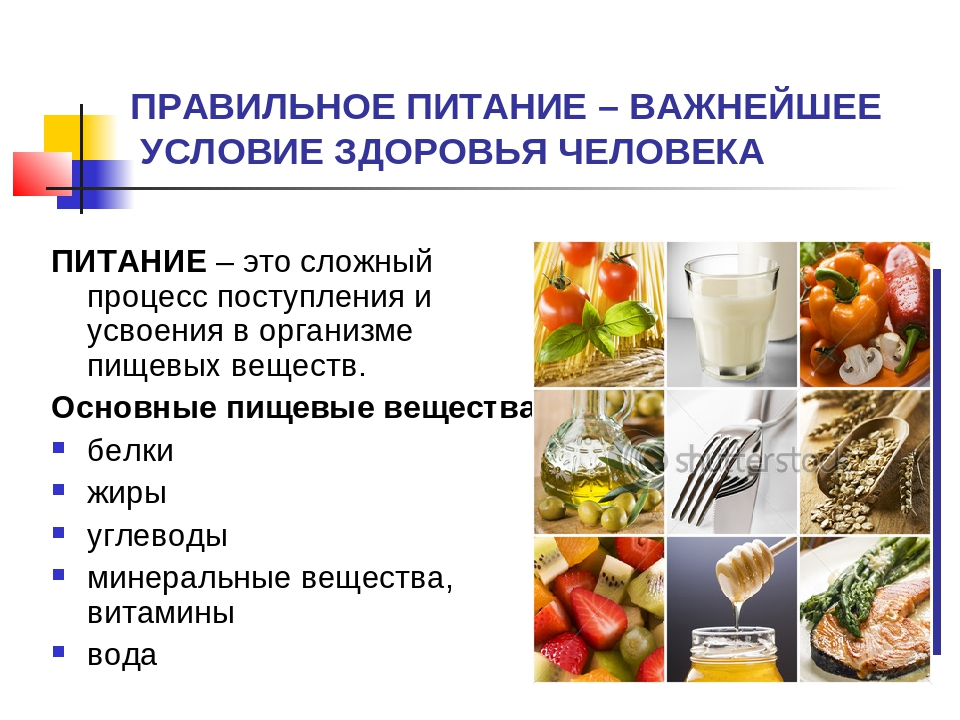 skachat-prezentatsiyu-na-temu-pitanie-i-zdorove-cheloveka-predstaet-ideal