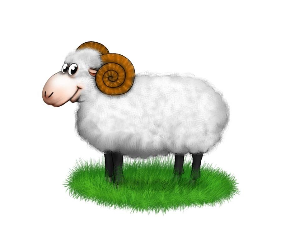 Картинка овечки для детей