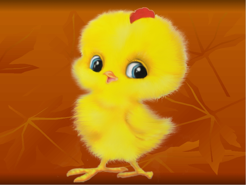 выбирал, картинка цыпленка детям через