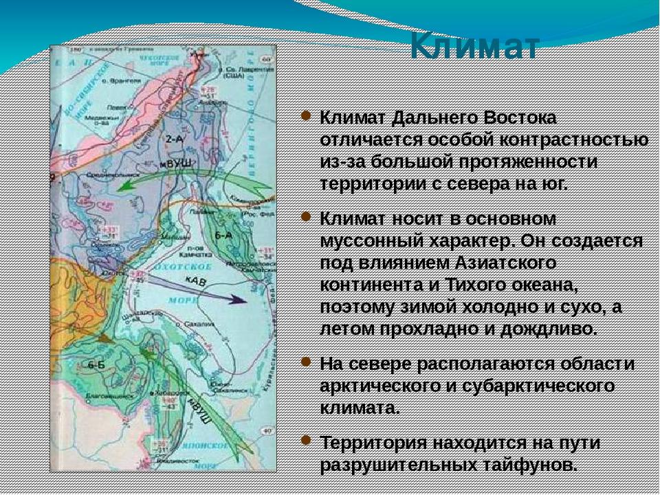наш север европейской части россии интересные факты этот остров удивит