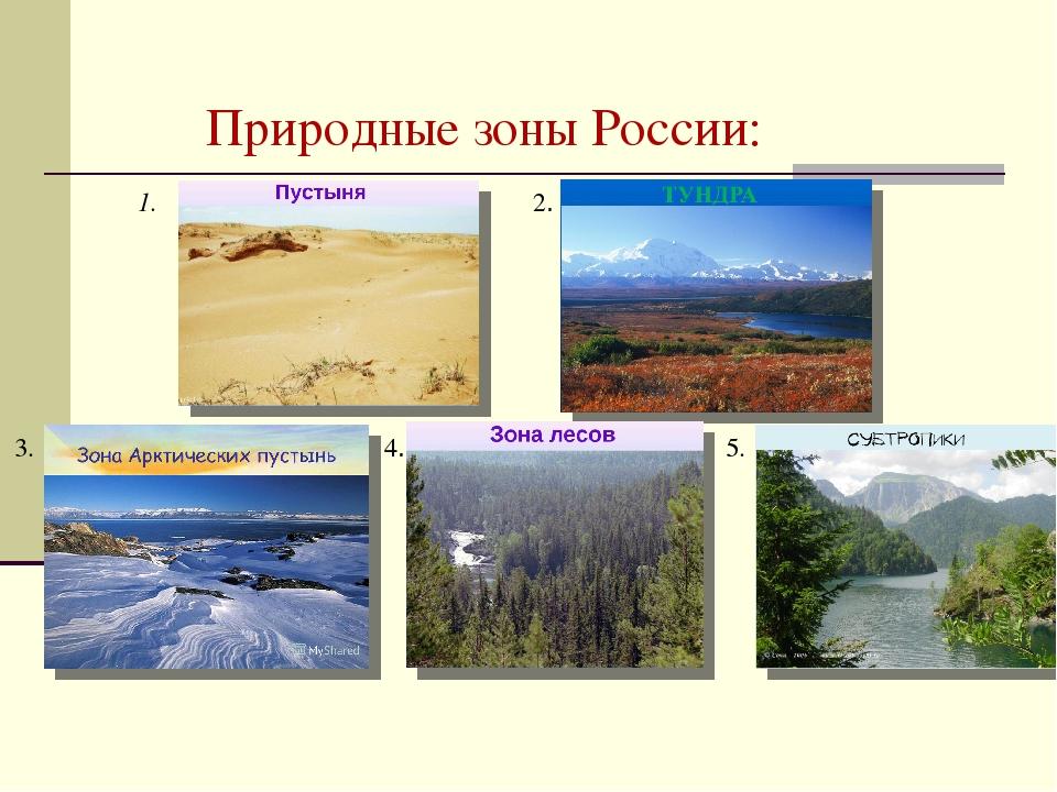 металлического картинки разных природных зон короткая