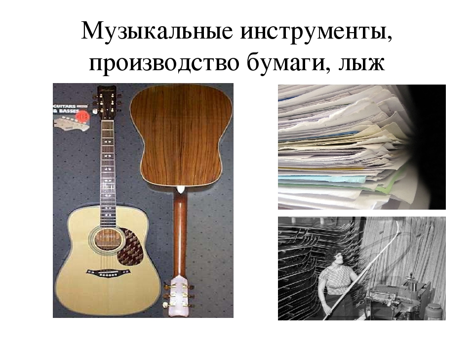 Музыкальные инструменты, производство бумаги, лыж