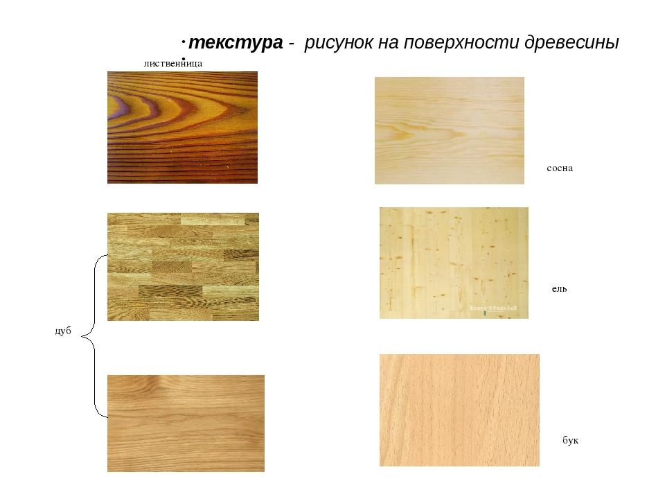 текстура - рисунок на поверхности древесины лиственница дуб сосна ель бук