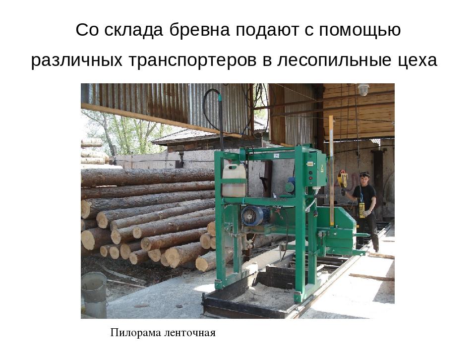 Со склада бревна подают с помощью различных транспортеров в лесопильные цеха...