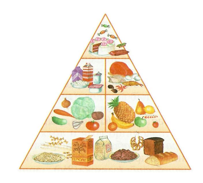 приложение здоровое питание пирамида питания картинки красивые европейские деревья