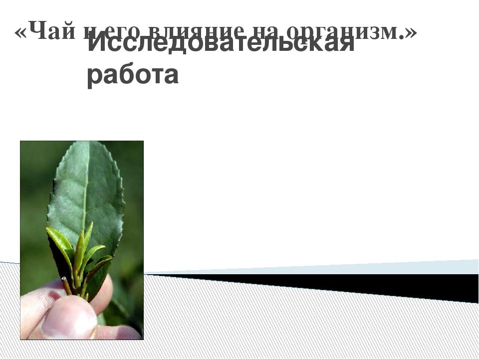 «Чай и его влияние на организм.» Исследовательская работа