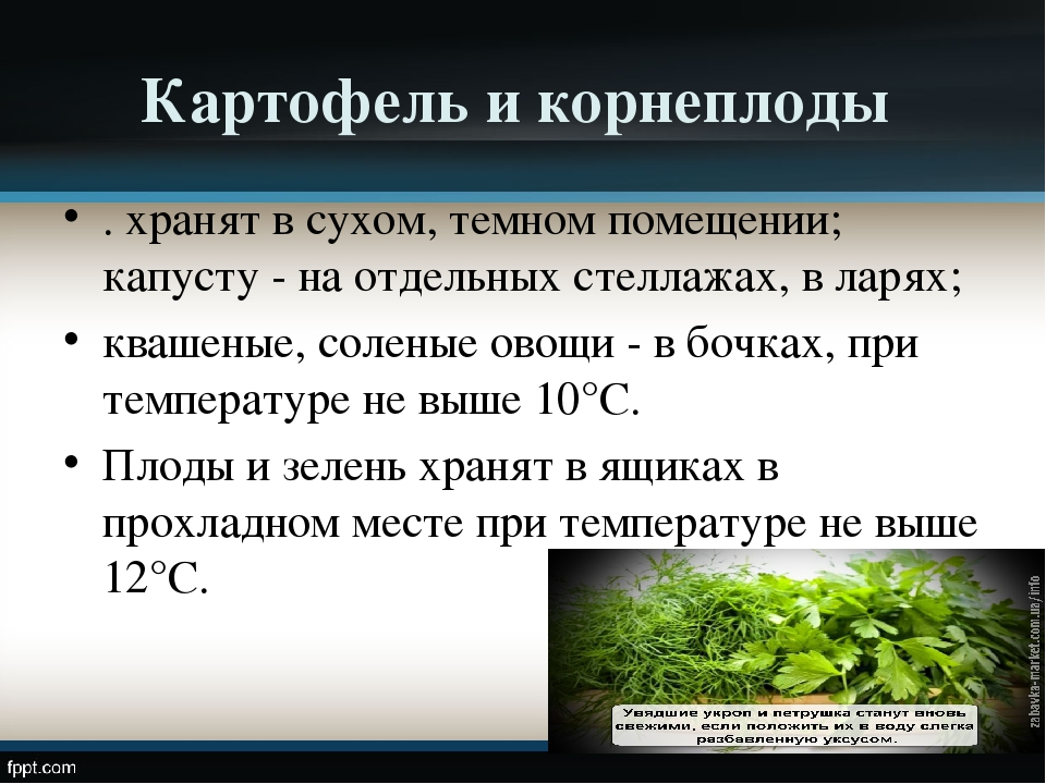 Картофель и корнеплоды . хранят в сухом, темном помещении; капусту - на отдел...