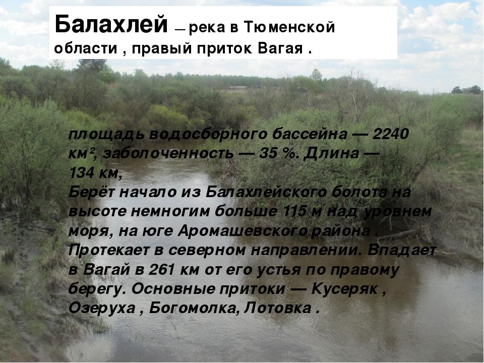 italyanskoe-foto-na-reke-ero-gospozha-delaet