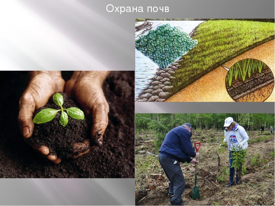 Охрана почв в картинках