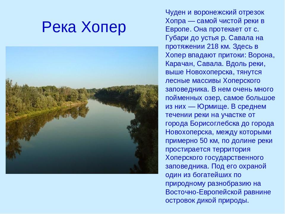 доклад про реку воронеж