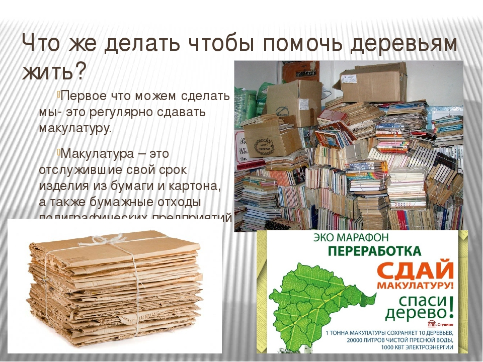 Сколько макулатуры сохранит живые деревья для изготовления бумаги макулатура в белгороде