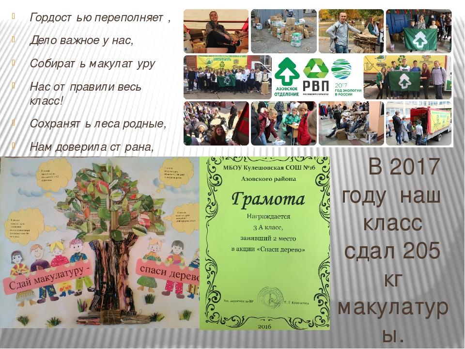 Сколько макулатуры сохранит живые деревья для изготовления бумаги приемка картона екатеринбург