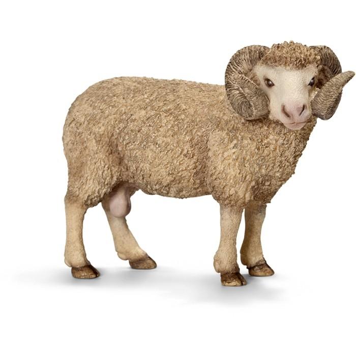Картинки овца для детей по одному