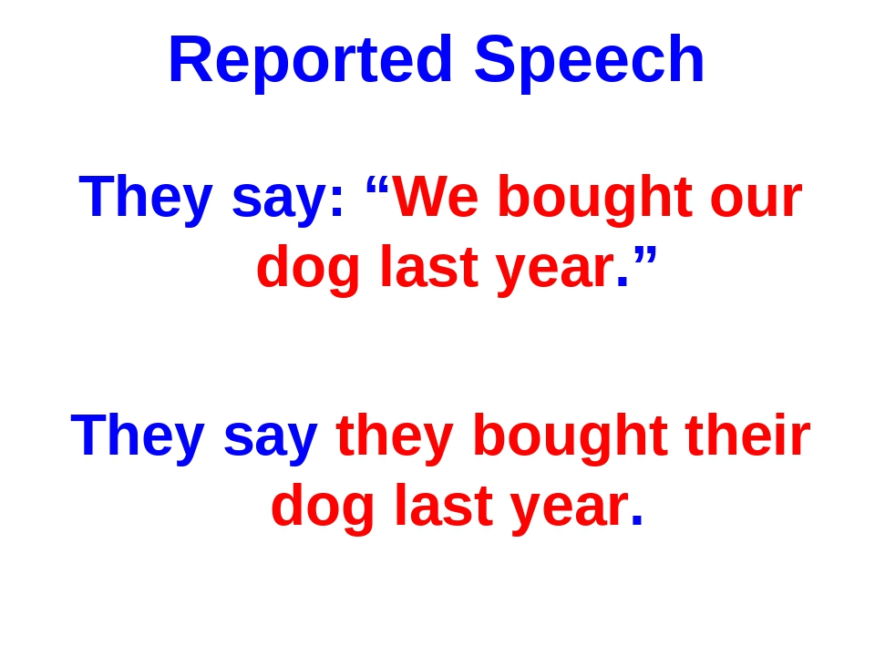 """Reported Speech They say: """"We bought our dog last year."""" They say they bought..."""
