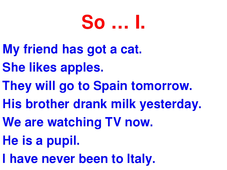 So … I. My friend has got a cat. She likes apples. They will go to Spain tomo...