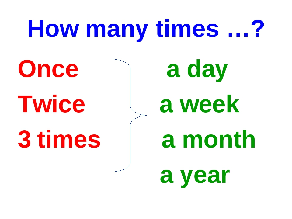 How many times …? Once a day Twice a week times a month a year