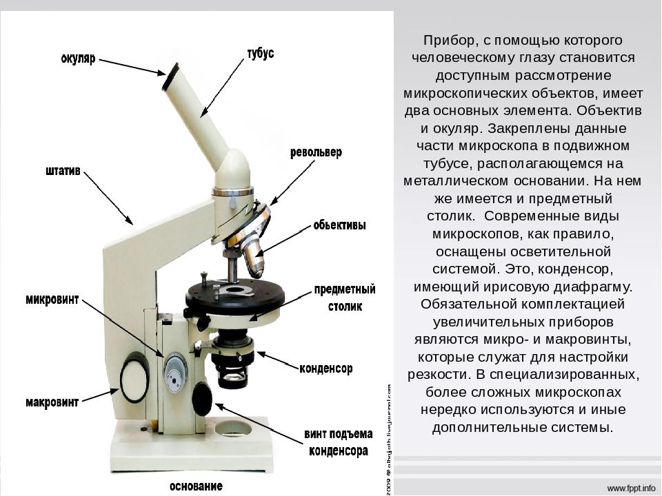 вариант пригоден микроскоп фото с описанием что где находится разделяет объекты элементы