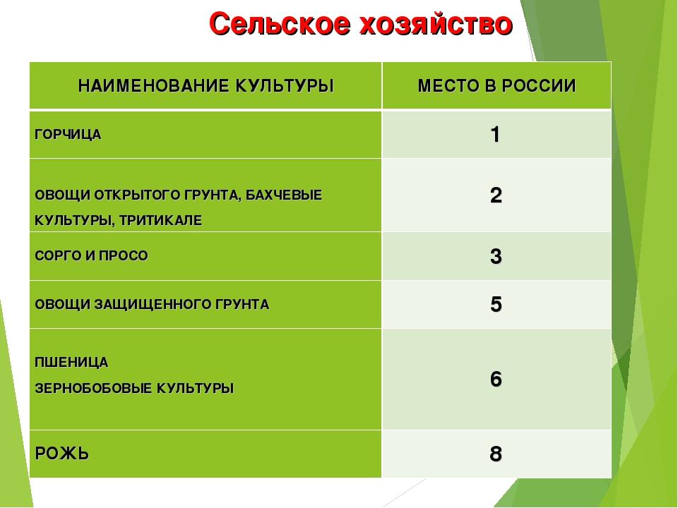 Сельское хозяйство НАИМЕНОВАНИЕ КУЛЬТУРЫМЕСТО В РОССИИ ГОРЧИЦА1  ОВОЩИ ОТК...