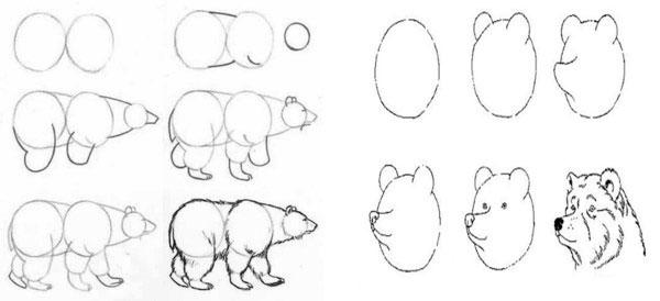 Рисуем поэтапно для начинающих животные