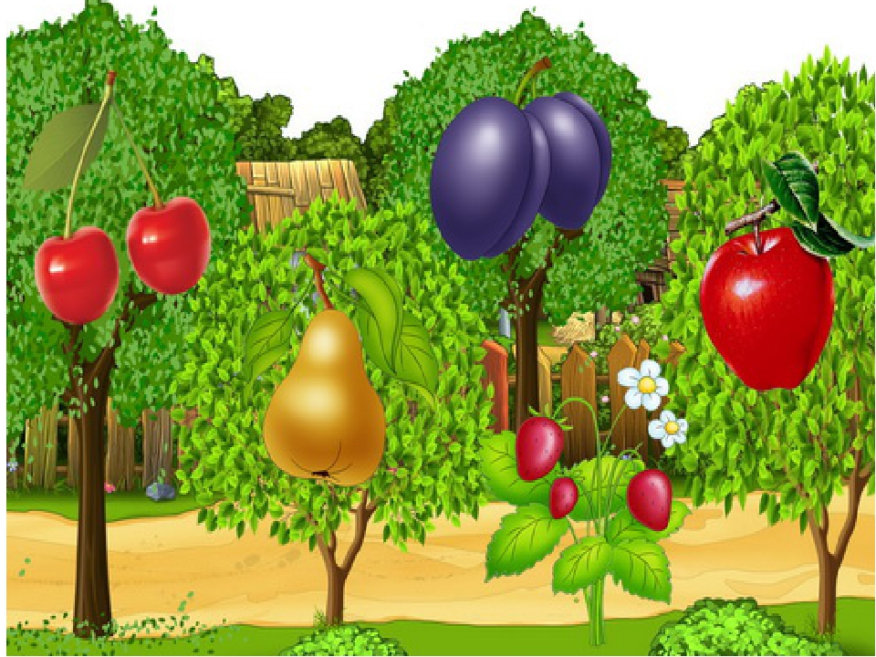 вообще картинка фруктового сада без фруктов интерьер, так как