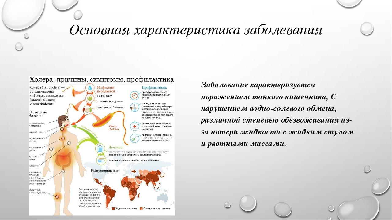 Доклад по биологии на тему холера 8913