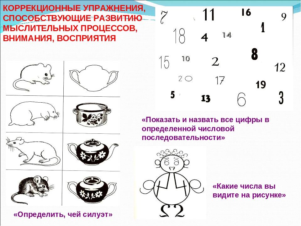 Коррекционные упражнения на развитие восприятия