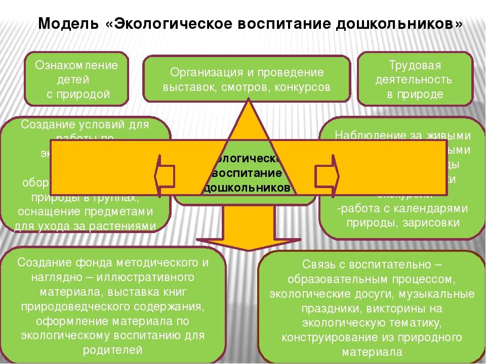 модели для работы с детьми по экологическому воспитанию