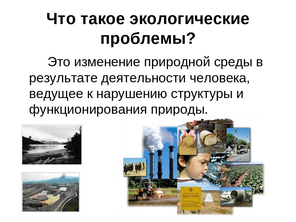 Что такое экологические проблемы? Это изменение природной среды в результат...