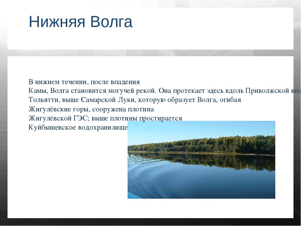 Нижняя Волга В нижнем течении, после впадения Камы, Волга становится могучей...
