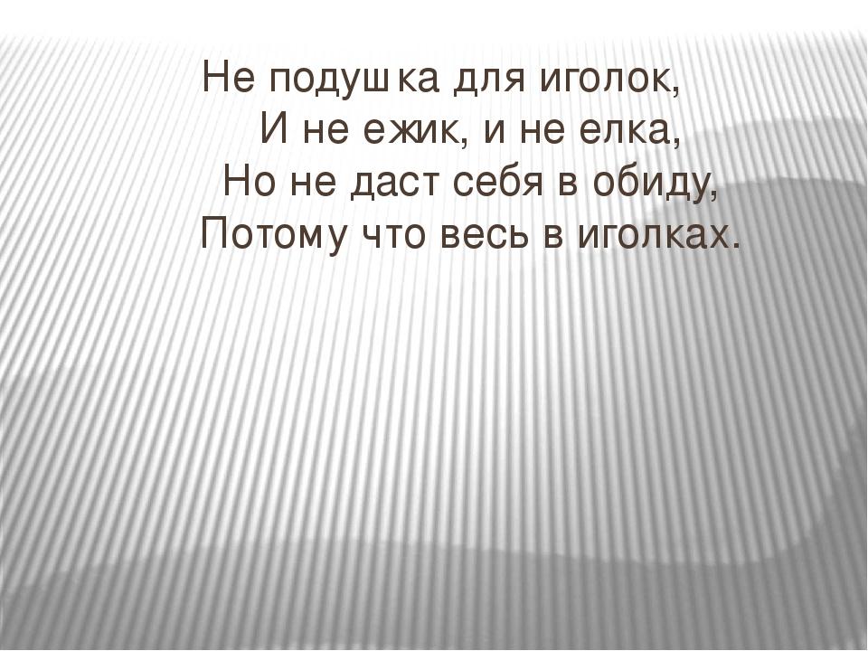 Не подушка для иголок, И не ежик, и не елка, Но не даст себя в обид...