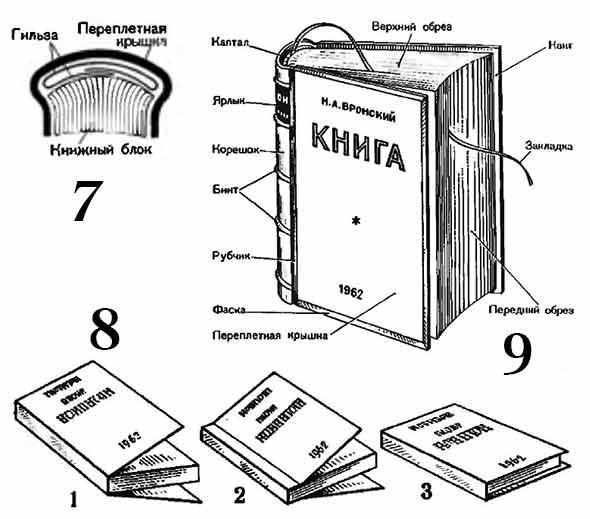 сценария анимационного конструкция книги картинки линия соединяла