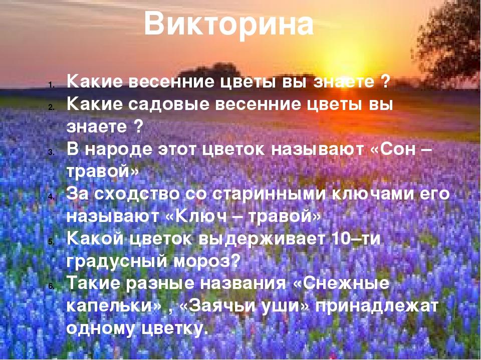 Викторина Викторина Какие весенние цветы вы знаете ? Какие садовые весенние ц...