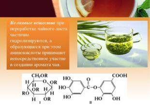 Белковые вещества при переработке чайного листа частично гидролизируются, а о