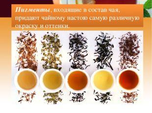 Пигменты, входящие в состав чая, придают чайному настою самую различную окрас