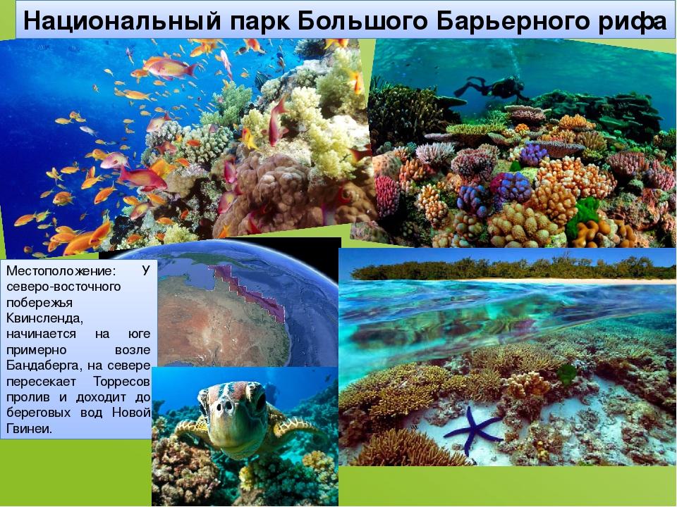 Национальный парк Большого Барьерного рифа Местоположение: У северо-восточног...