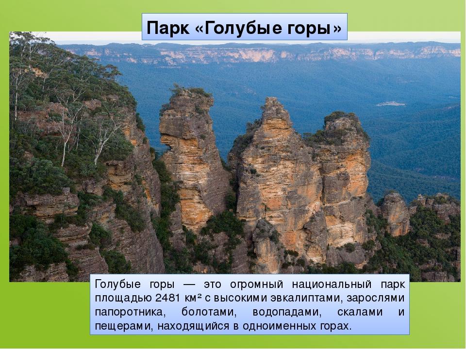 Парк «Голубые горы» Голубые горы — это огромный национальный парк площадью 24...