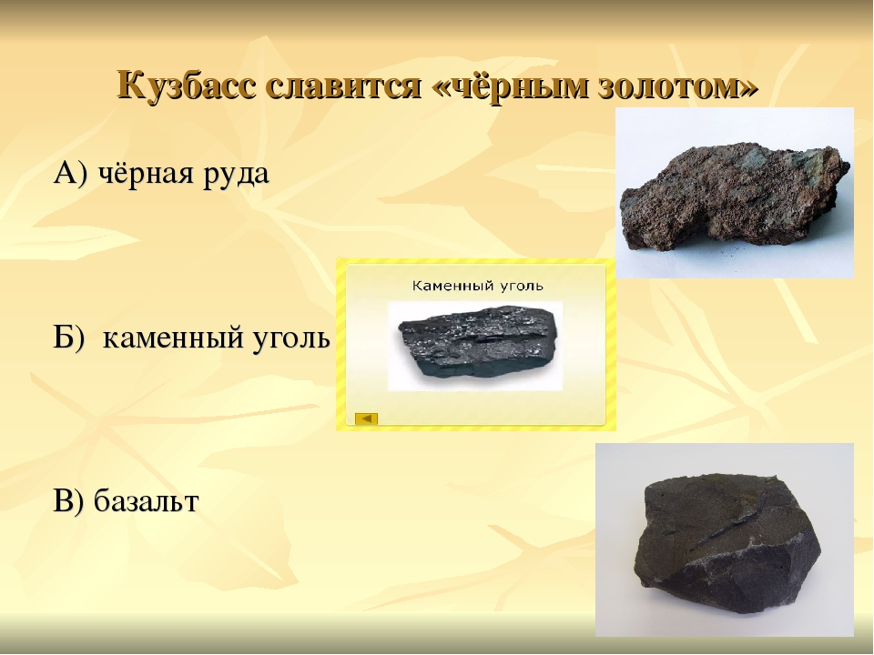 https://ds04.infourok.ru/uploads/ex/0ca6/00106055-173f9fff/1/img14.jpg