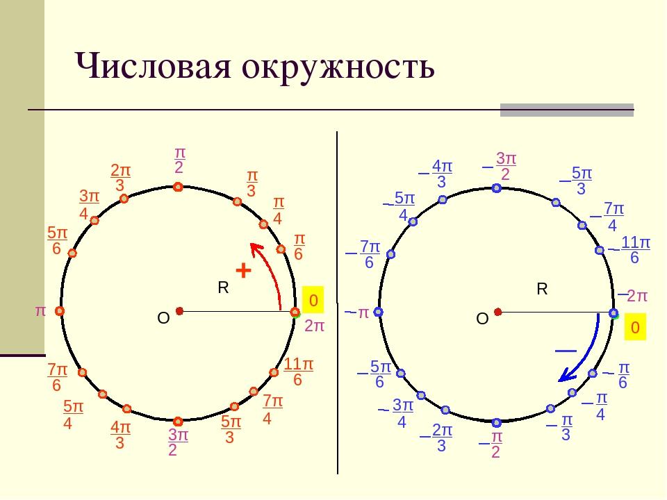 Картинки с числовой окружностью