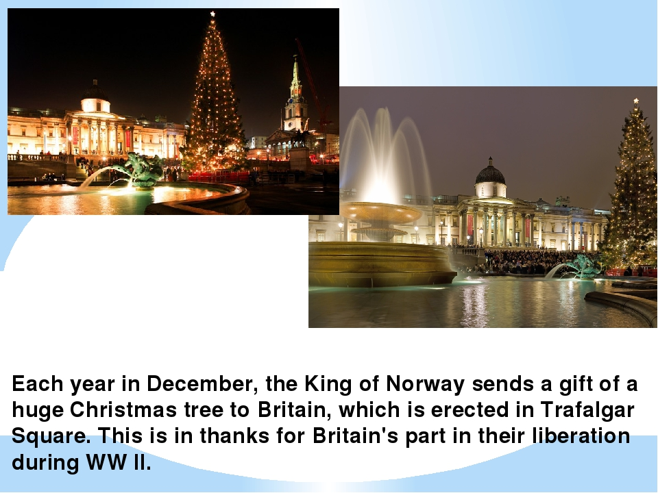 Each year in December, the King of Norway sends a gift of a huge Christmas tr...