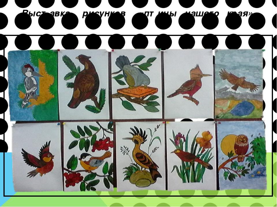 Выставка рисунков «птицы нашего края»