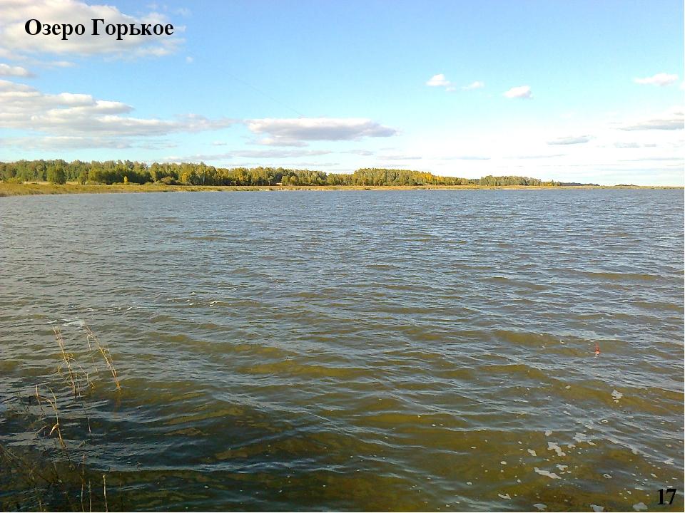 Озеро Горькое 17