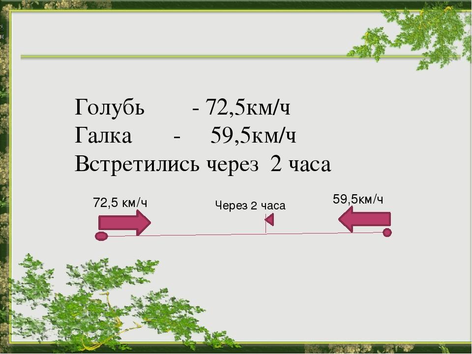 Голубь - 72,5км/ч Галка - 59,5км/ч Встретились через 2 часа 72,5 км/ч 59,5км...